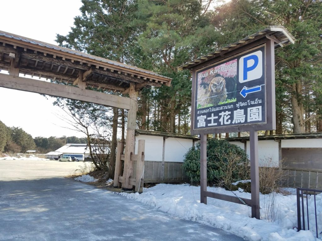 富士花鳥園 #japanroyalservice